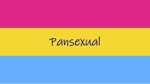 Thumbnail for What does it mean to be pansexual?