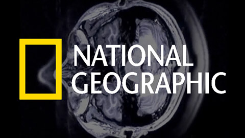 Thumbnail for National Geographic explores the science of same-sex attraction